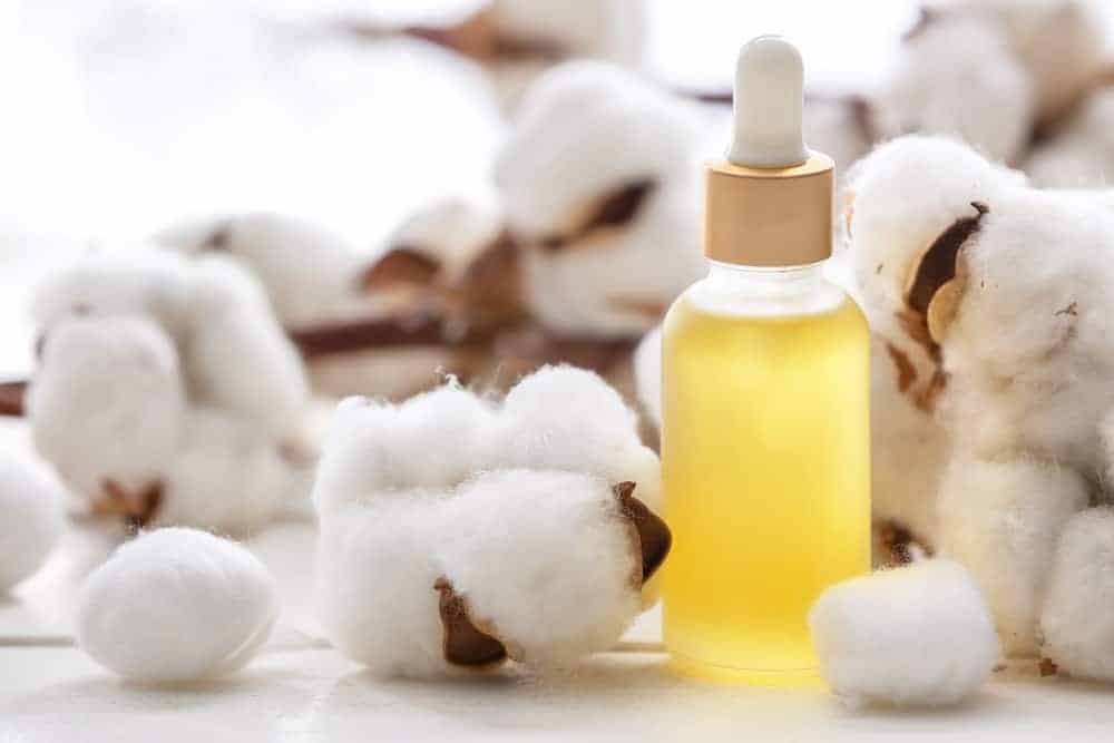 aceite de semilla de algodón