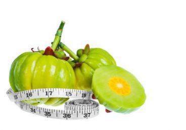 garcinia cambogia frutta
