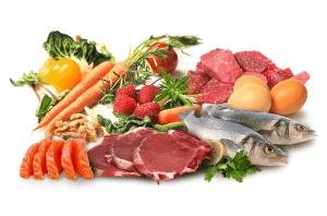 Foods in the paleo diet