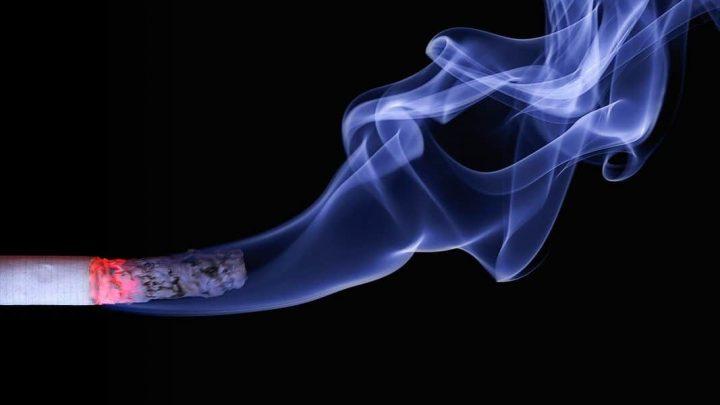 cigar cigarette smoke macro 70088 1