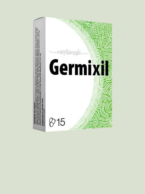 Germixil 2