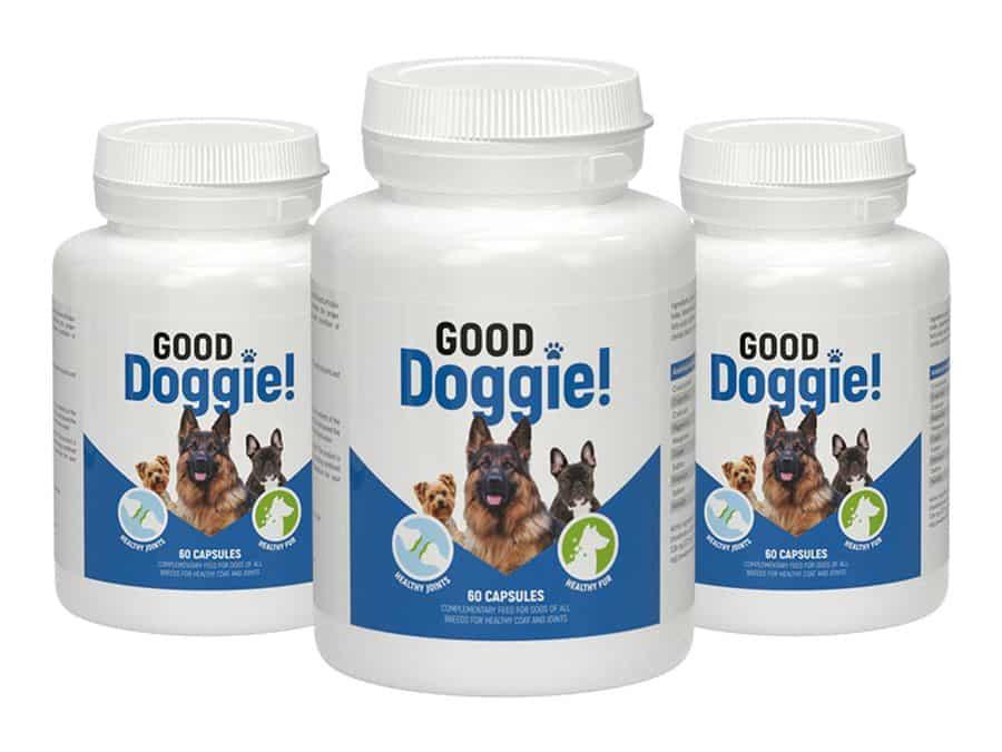 good doggie 4
